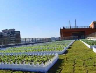 合肥将建中国(安徽)休闲农业博览园