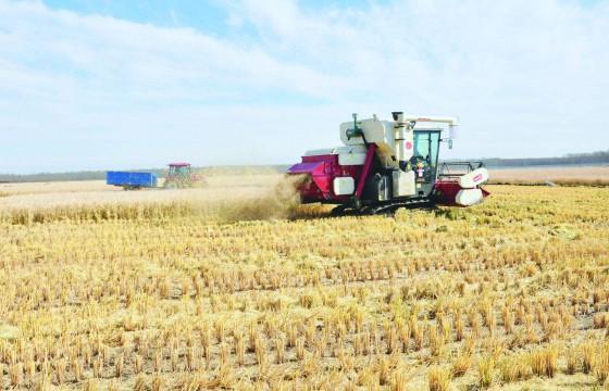 超高效的现代农业设备和机械,真是开眼界了