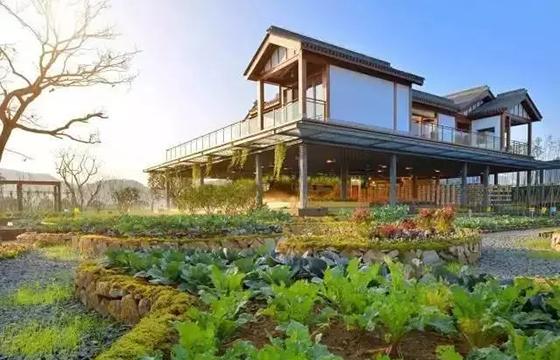 特色小镇+现代农业的案例:蓝城农庄小镇