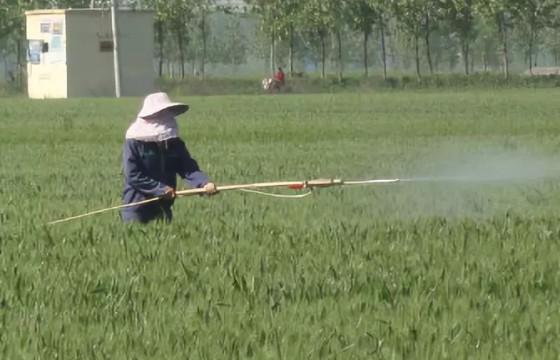 农药价格平均涨幅30%以上!农民觉得无所谓?你怎么看?