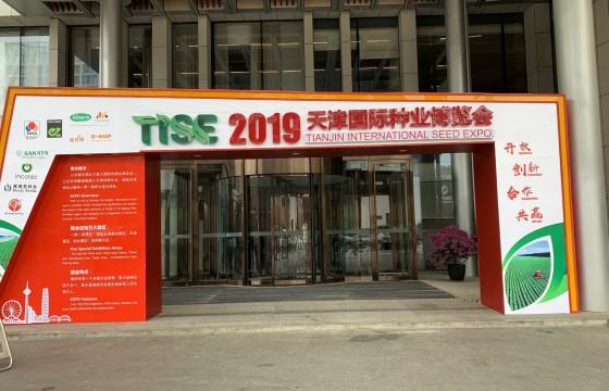聚焦2019天津国际种业博览会, 4000多个品种撩花你的眼!